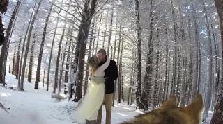 Dog films snowy wedding video with GoPro