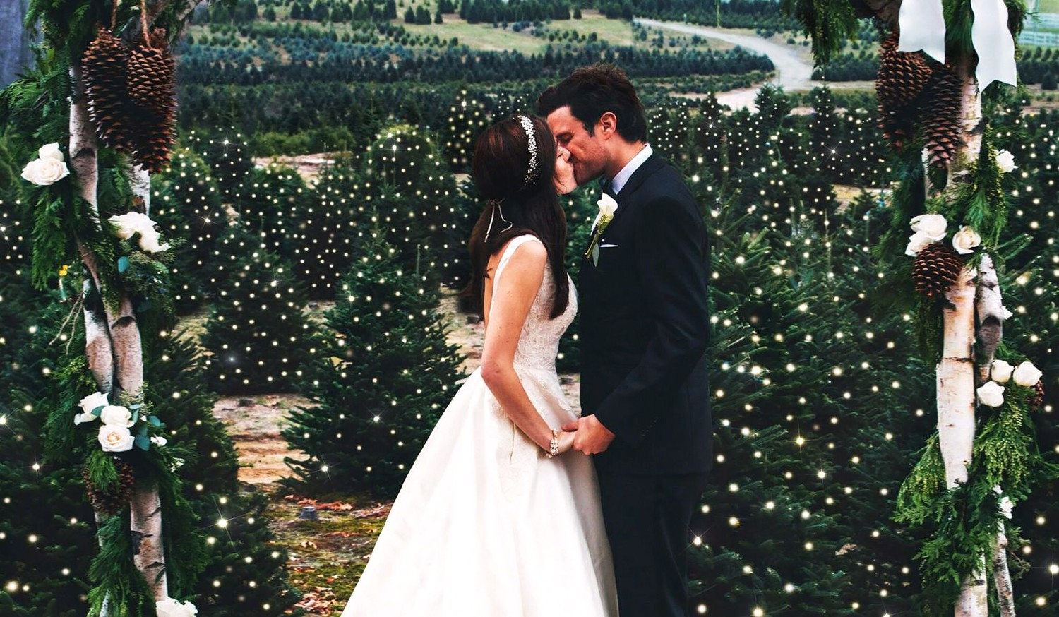 Christmas Tree Farm Weddings.Couple Has Christmas Tree Farm Wedding To Honor Tradition