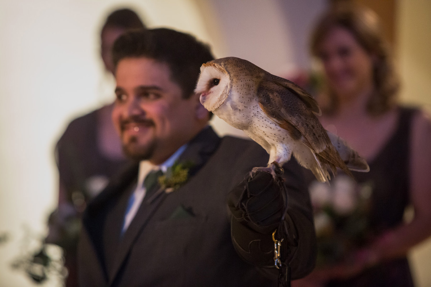 Harry Potter owl best man