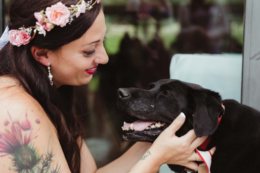 Bride's Dying Dog Lives Long Enough to Take Part in His Owner's ...