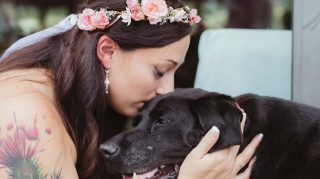 Charlie Bear Dying Dog Bride