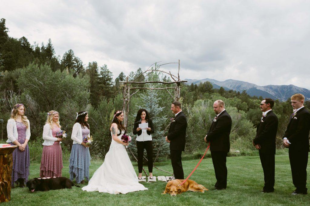 Charlie Bear bride dog