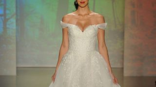 Alfred Angelo Bankruptcy