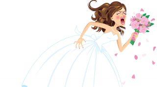 bridezilla bride bid wedding party