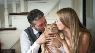 Tubby Tabby fat cat wedding