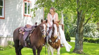 horse photobomb wedding bride