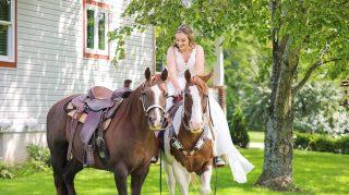 horse photobomb wedding bride