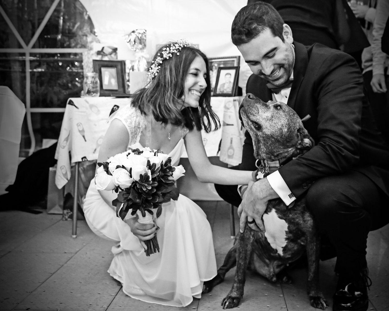 Bride lupus wedding groom proposal engagement same day