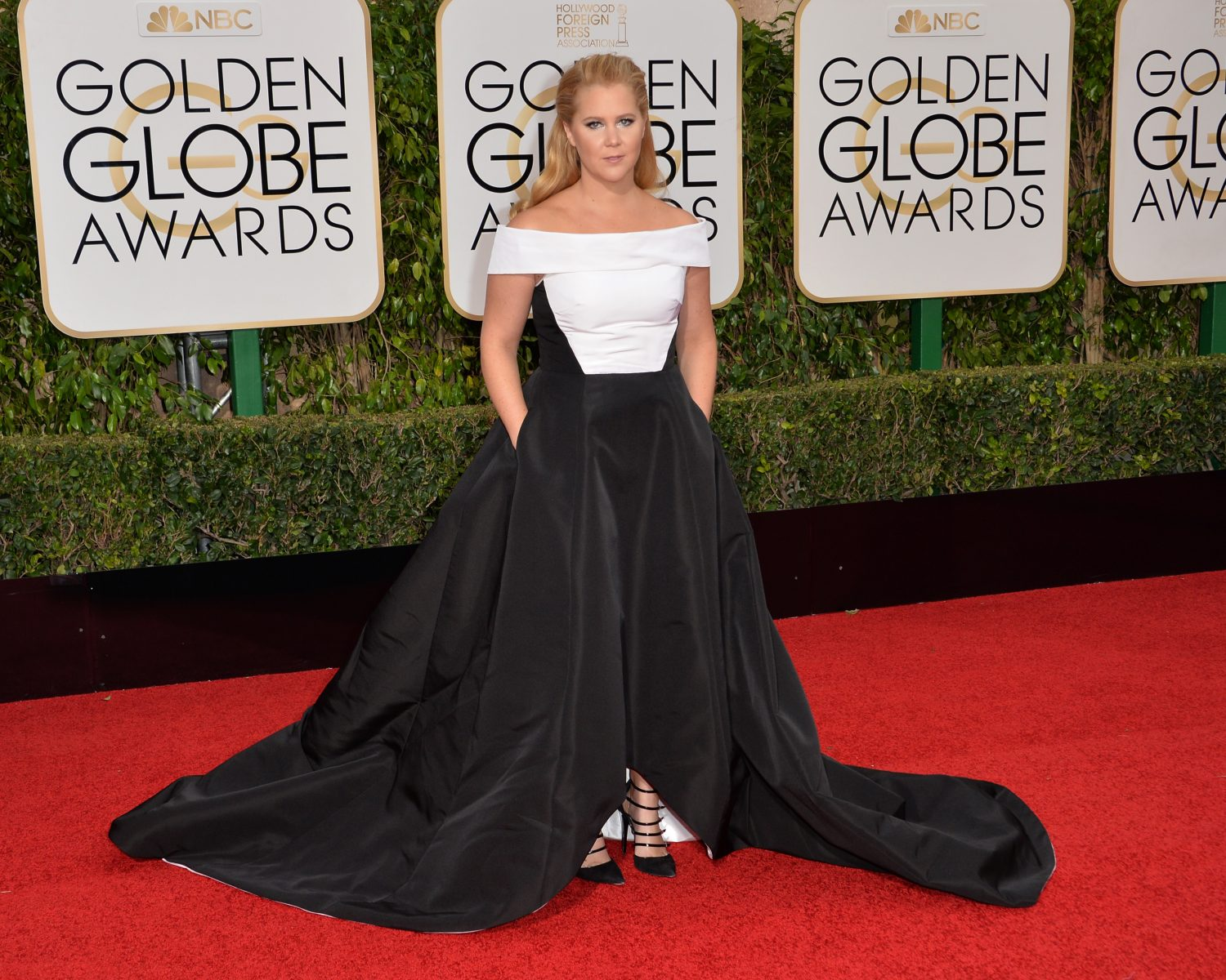 Amy Schumer Married