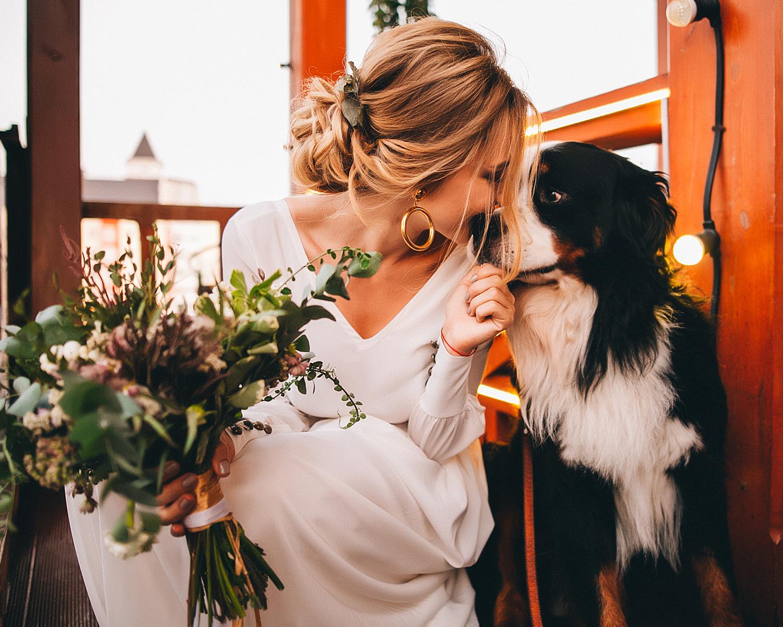 First Look Wedding Photos Dog